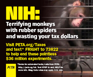 PETA Ad about NIH Monkey Fright Experiments