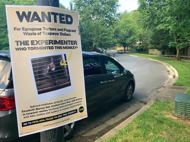 Activists Post Wanted Flyers Exposing Monkey Fright Experiments