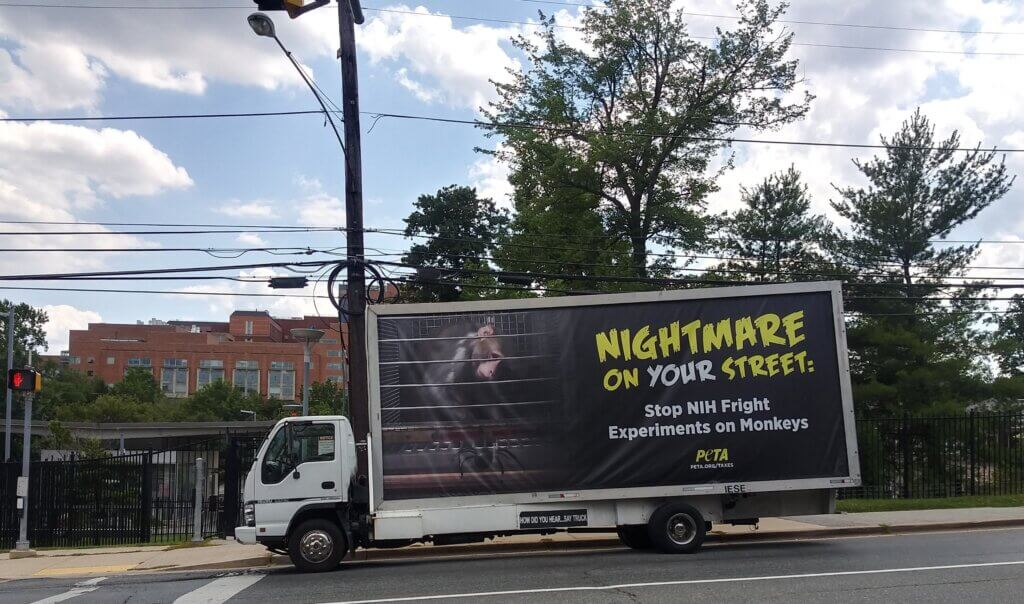 Truck Ad Driving Around Maryland Exposing NIH Monkey Fright Experiments