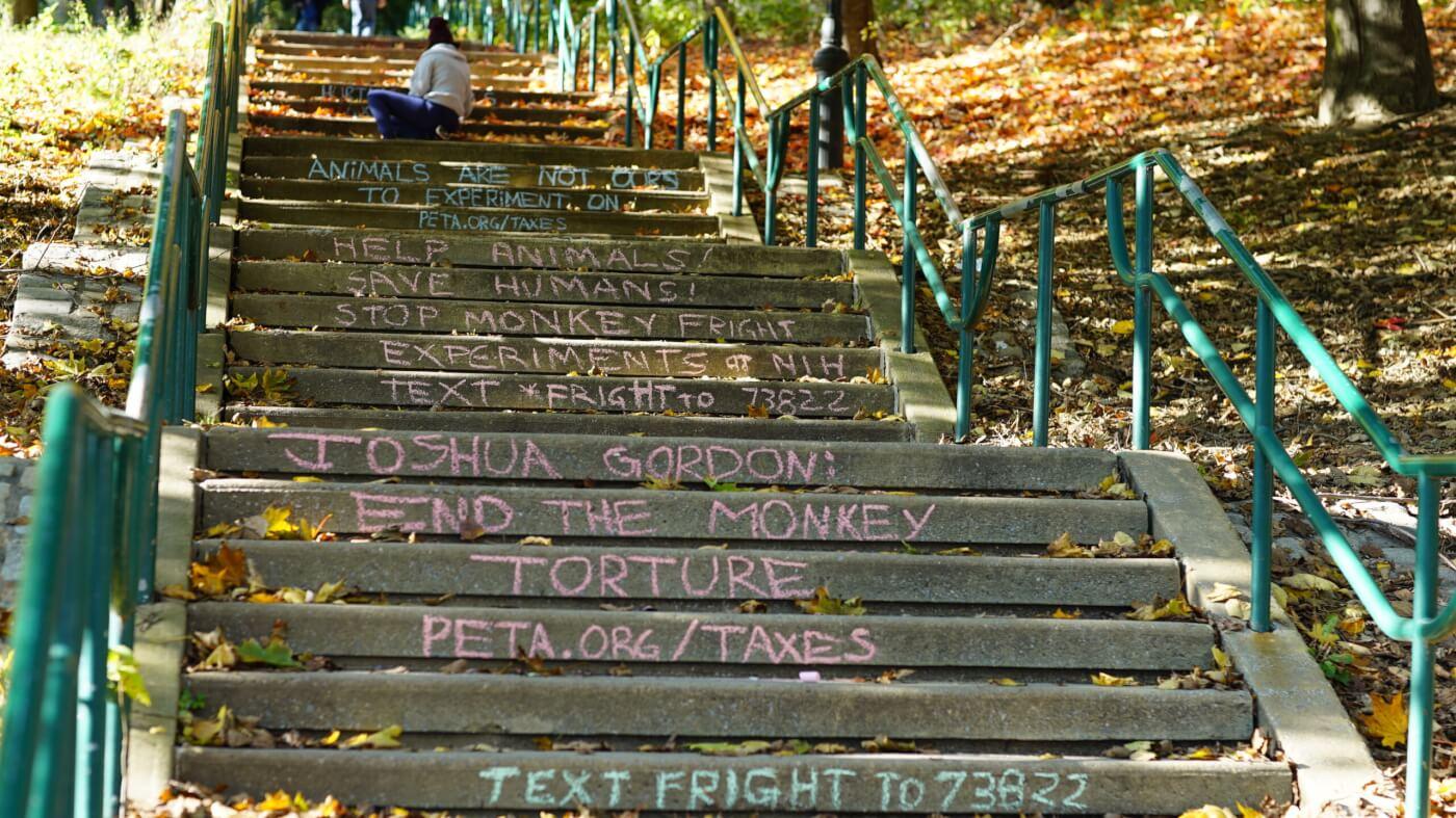 Chalk activism