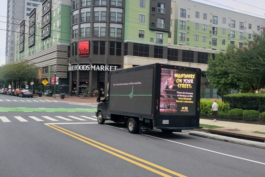 a mobile billboard truck with a message to end the monkey fright experiments at NIH