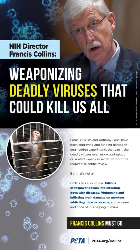 PETA ad in Washington Post Blasts NIH Director